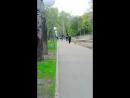 катаюсь на упряжке собак в парке Динамо