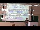 Лекции И Г Овчинниковой в ПГНИУ Нейропсихология и нейролингвистика