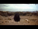 2001 A Space Odyssey - The Dawn of Man (best cut)