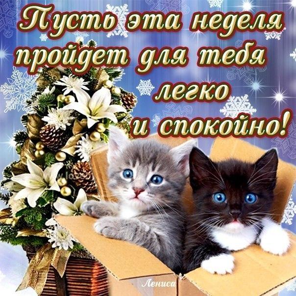 Легкого понедельника и удачной недели! Image Pinterest 60