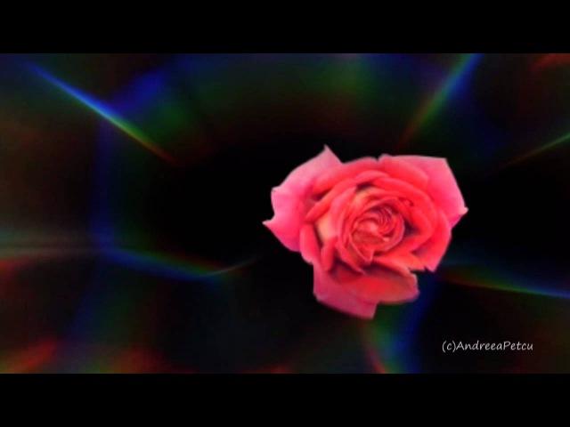 GIOVANNI MARRADI - Just For You