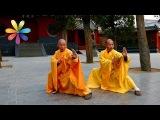 Секрет продления молодости и долголетия тибетских монахов! Все буде добре. Выпуск 696 от 29.10.15
