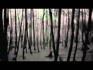 In The Nursery - Paralysed Time / Tarkovsky