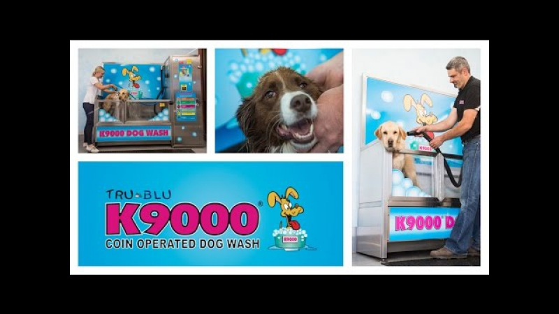 K9000 Dogwash Story