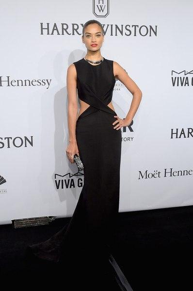 Шанина Шейк Гала-ужин amfAR-2015 в Нью-Йорке изысканное черное платье в пол