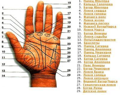 знакомства гадание на руке