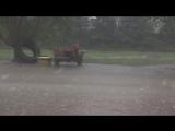 Ураган в городе Додж-Сити, штат Канзас, США.