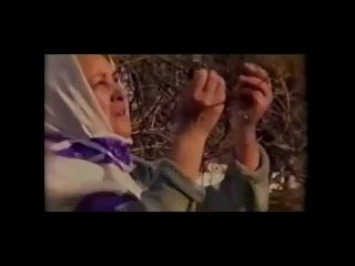 Leyla Talısh - Shine Mo
