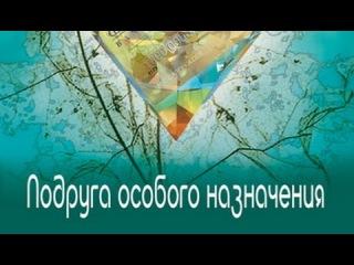 Татьяна Устинова. Подруга особого назначения 4