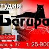 """Мебельная студия """"БАГИРА"""" Сокол/Вологда"""