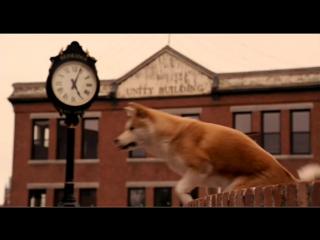 Видео к фильму «Хатико Самый верный друг» (2008) Трейлер (дублированный)