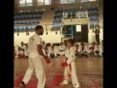 Luigi Busa Karate