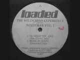 The Wildchild Experience - Bring It Down (Distorted Dub)