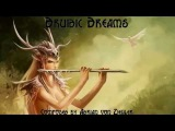 Celtic Fantasy Music   Druidic Dreams - (ZB)