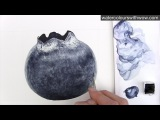 How to paint a realistic blueberry with just ONE colour -in watercolor - by Anna Mason