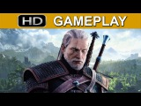 The Witcher 3 Gameplay (Sunrise)