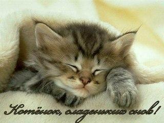 Спокойной ночи картинки | ВКонтакте