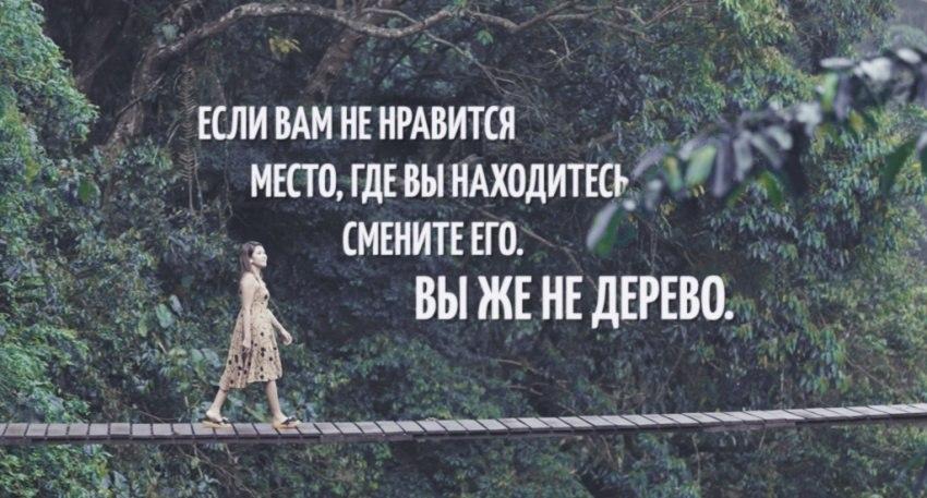 https://pp.vk.me/c625226/v625226831/3049c/C98D1L6NQzo.jpg