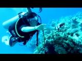 Первый. Кривой. Подводный.