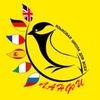 Lanfe - языковая школа для всех