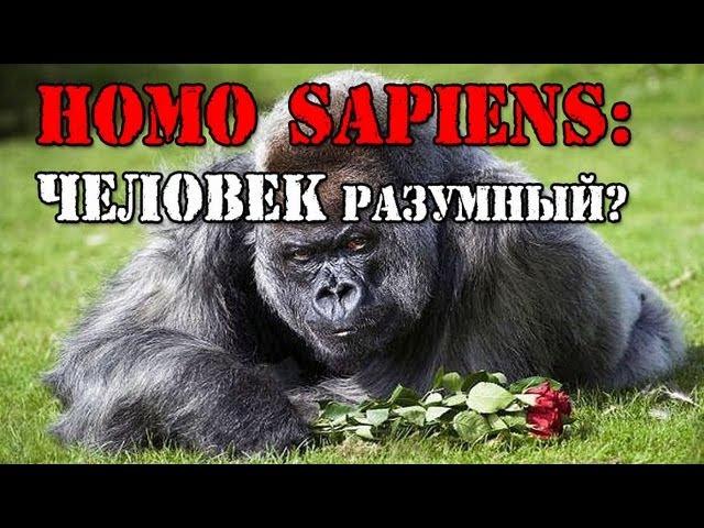 Homo sapiens ЧЕЛОВЕК РАЗУМНЫЙ