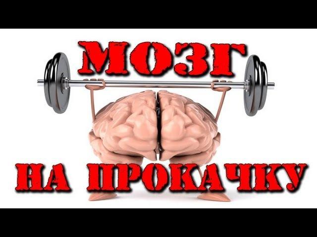 МОЗГ НА ПРОКАЧКУ (развитие мозга)