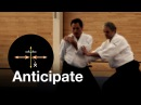 Aikido Anticipation Christian Tissier Shihan