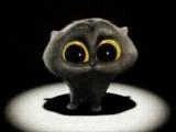 Cat singing song - (Scatman John - Ski Ba Bop Ba Dop Bop)