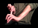 Essential Hand Stretches For Guitarists or Any Instrumentalist