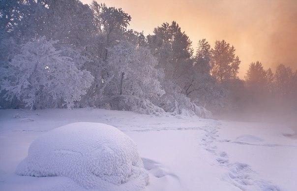 Заснеженный берег Енисея