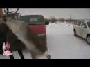 Самое ржачное видео в мире, короткие ролики  Прикольные и смешные видеоролики (2)
