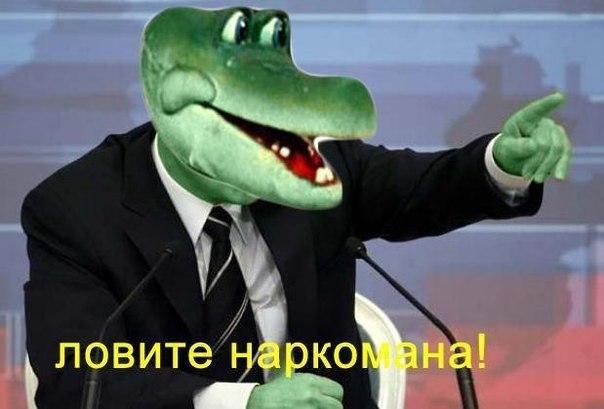 Плантацию мака и конопли выявили на Днепропетровщине, - Нацполиция - Цензор.НЕТ 5872