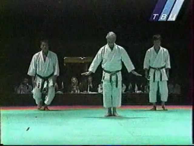 Hidetaka Nishiyama Intercontinental Cup in the traditional karate 2000.