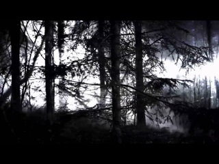 Iamamiwhoami - In Concert [live from 16.11.2010]