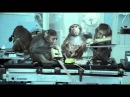 Basement Jaxx Where's Your Head At Official Video Rooty