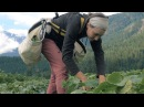 The Call of the Land Meet The Next Generation of Farmers Short Film Showcase