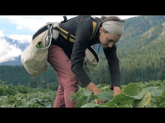 The Call of the Land Meet The Next Generation of Farmers | Short Film Showcase