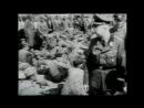 Discovery «Нацизм_ Оккультные теории Третьего Рейха» (Документальный, 1998)