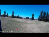 Tom Lure Coursing