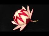 Simple Red Radish Waratah Flower Design - Lesson 21 By Mutita Art Of Fruit And Veg Carving