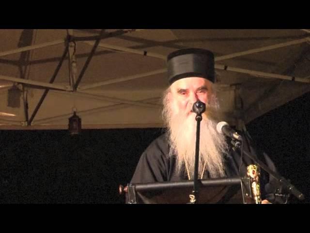 Митрополит Амфилохије О светом Јовану Крститељу