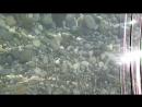 Дикий пляж Бельдиби в 10 минутах хотьбы от отеля Сельчукхан ТУРЦИЯ