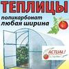 ТЕПЛИЦЫ из поликарбоната КИРОВ тел(8332) 206-466