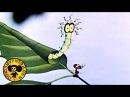 Путешествие муравья Мультфильмы для взрослых