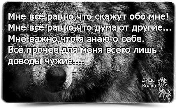 http://cs625316.vk.me/v625316821/30355/sD_9qiTrcXM.jpg
