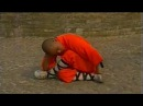 Shaolin big Buddha kung fu luohan quan part 3 A