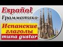 Испанский язык Урок 4/29. Испанские глаголы типа gustar. Грамматика испанского языка. Шипилова.