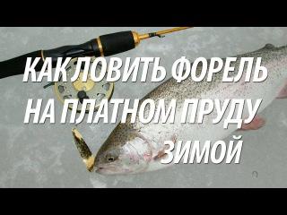 Рыбалка в Подмосковье на форель зимой