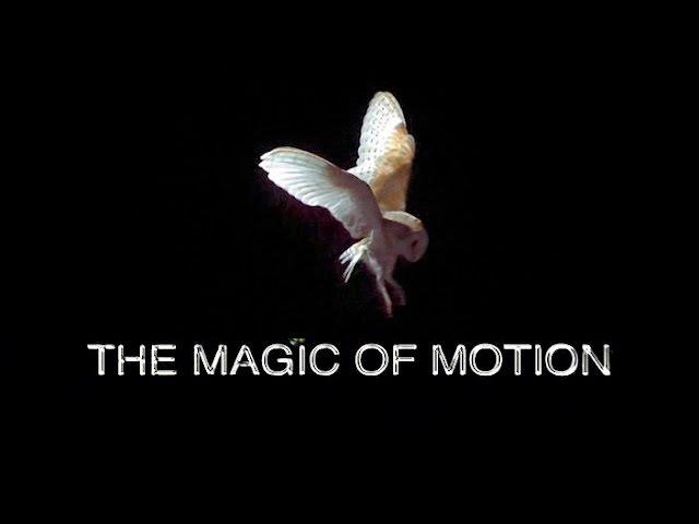Технологии от природы: Волшебство Движения
