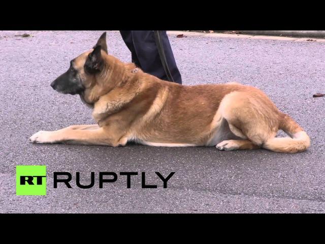 Германия: Полицейский патруль Французской границы в Саарбрюккен после Парижа терактов.